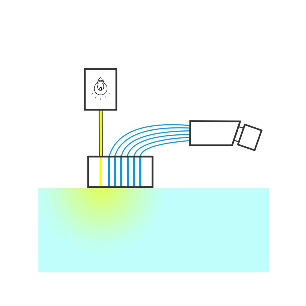 空間分解分光法 SRS Spatially Resolved Spectroscopy 半透明物体測定